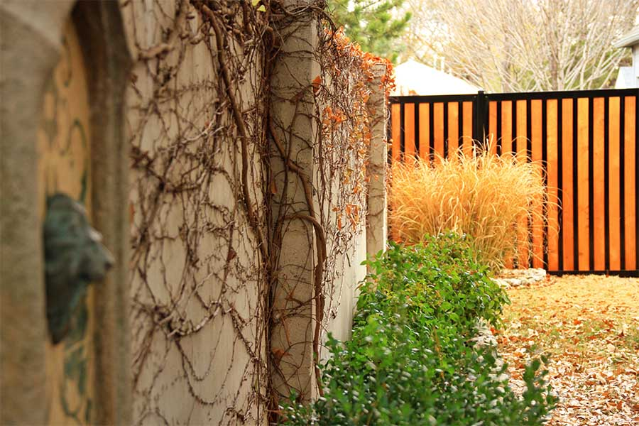 11 Backyard Fence Ideas Beautiful Privacy For People