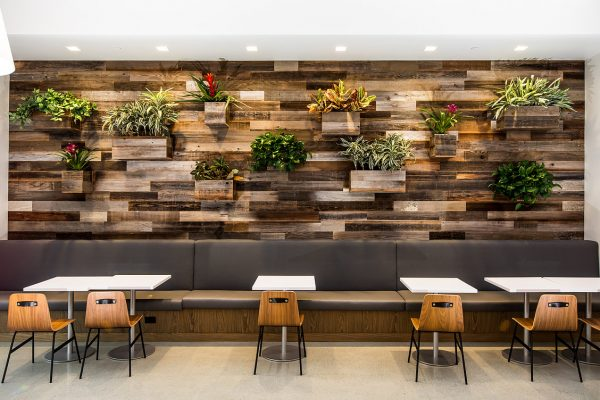 Rewoodd Reclaimed Wood Cafeteria Wall Planks