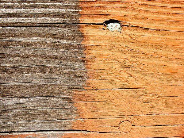 Restorative Deck Stain